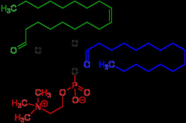 فرمول شیمیایی لسیتین