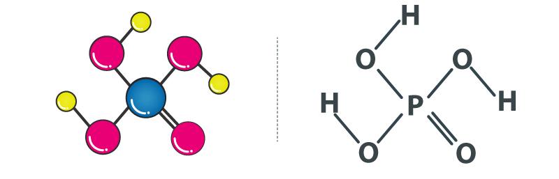 ساختار مولکولی اسید فسفریک